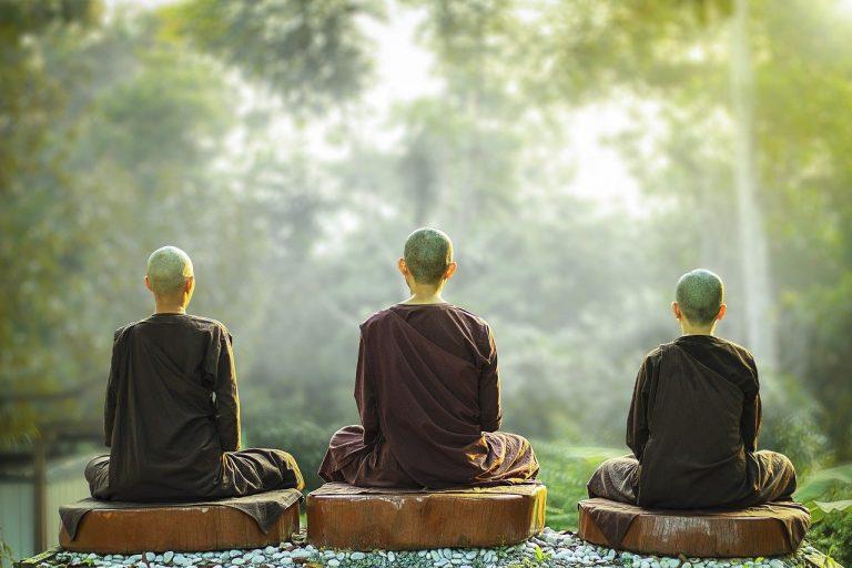 theravada buddhism, nuns, meditation
